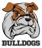 Mascota de los deportes de los dogos Fotografía de archivo