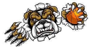 Mascota de los deportes del baloncesto del dogo Imagen de archivo
