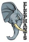 Mascota de los elefantes Imágenes de archivo libres de regalías