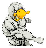 Mascota de perforación del pato Foto de archivo