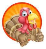 Mascota de Turquía de la historieta Imágenes de archivo libres de regalías