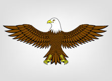 Mascota del águila Fotografía de archivo libre de regalías
