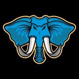 Mascota del elefante Imagen de archivo libre de regalías