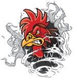 Mascota del gallo de la historieta que rasga fuera de fondo Fotografía de archivo libre de regalías