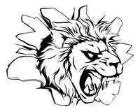 Mascota del león que se rompe a través de la pared Fotografía de archivo
