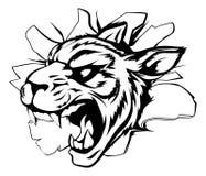 Mascota del tigre que se rompe a través de la pared Fotografía de archivo