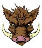 Mascota del verraco Imagen de archivo libre de regalías