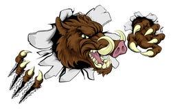 Mascota mala del Razorback del facoquero del verraco Fotos de archivo