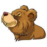 Mascota principal animal salvaje del oso libre illustration