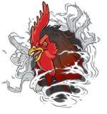 Mascota realista del gallo que rasga fuera de fondo Imagen de archivo