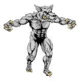 Mascote assustador dos esportes do lobo do homem-lobo ilustração royalty free
