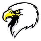 Mascote da cabeça de Eagle Imagem de Stock