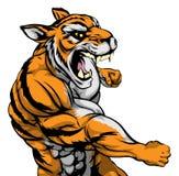 Mascote de perfuração do tigre Fotos de Stock