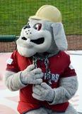 Mascote do basebol do campeonato menor de MiLB quebrado Fotos de Stock Royalty Free
