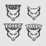 Mascote do Fox Imagem de Stock Royalty Free