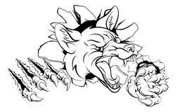 Mascote do Fox que estoira Fotografia de Stock