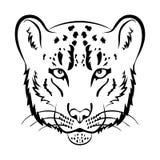Mascote do logotipo do leopardo de neve Ilustração isolada cabeça do vetor do leopardo de neve Fotografia de Stock