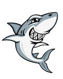 Mascote do tubarão dos desenhos animados Imagens de Stock Royalty Free
