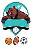 Mascote do urso Foto de Stock