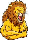 Mascote forte do leão Fotografia de Stock