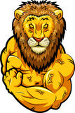 Mascote forte do leão Imagem de Stock