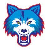 Mascote irritada da cabeça do lobo Imagens de Stock