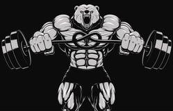 Mascote irritada da cabeça do urso Fotografia de Stock