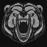Mascote irritada da cabeça do urso Imagens de Stock
