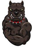 Mascote irritada do cão Imagem de Stock