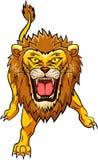 Mascote irritada do leão Fotos de Stock