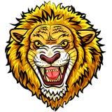 Mascote irritada principal do leão dos desenhos animados Imagens de Stock