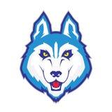 Mascote principal do lobo Imagem de Stock Royalty Free
