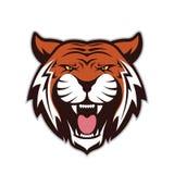 Mascote principal do tigre ilustração royalty free