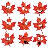 Mascote vermelha da folha de plátano Foto de Stock Royalty Free