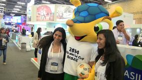 Mascots, Conferences, Shows, Exhibitions stock video footage