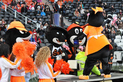 Mascots of FC Shakhtar Stock Photos