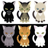 mascotte котят Стоковое Изображение
