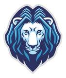 Mascotte capa del leone Immagini Stock