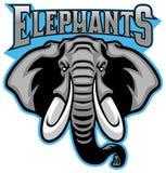 Mascotte capa dell'elefante illustrazione vettoriale