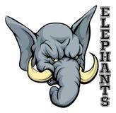 Mascotte d'éléphants Photo libre de droits