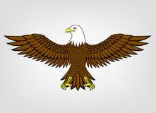 Mascotte d'aigle Photographie stock libre de droits