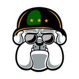 Mascotte d'armée de bouledogue Image libre de droits
