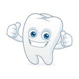 Mascotte de bande dessinée de dent propre et heureuse Photographie stock libre de droits