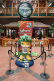 Mascotte de FIFA do copo de mundo de Zakumi, África do Sul Imagens de Stock Royalty Free