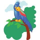 Mascotte de perroquet de bande dessinée sur le fond Photo stock