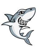 Mascotte de requin de dessin animé Images libres de droits
