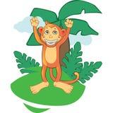 Mascotte de singe de bande dessinée sur le fond Image stock