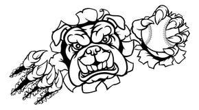 Mascotte de sports de base-ball de bouledogue Photos libres de droits