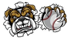 Mascotte de sports de base-ball de bouledogue illustration de vecteur