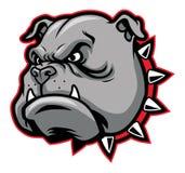 Mascotte del bulldog Fotografie Stock